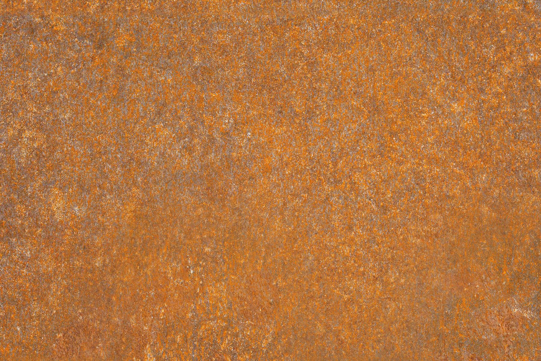 PlateART Duschrückwand mit Motiv Rost