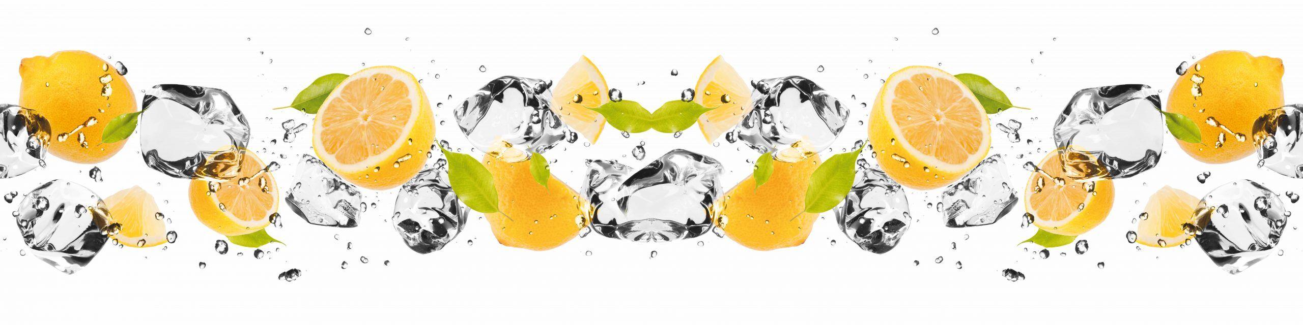 PlateART Küchenrückwand mit Motiv Orangen und Eis