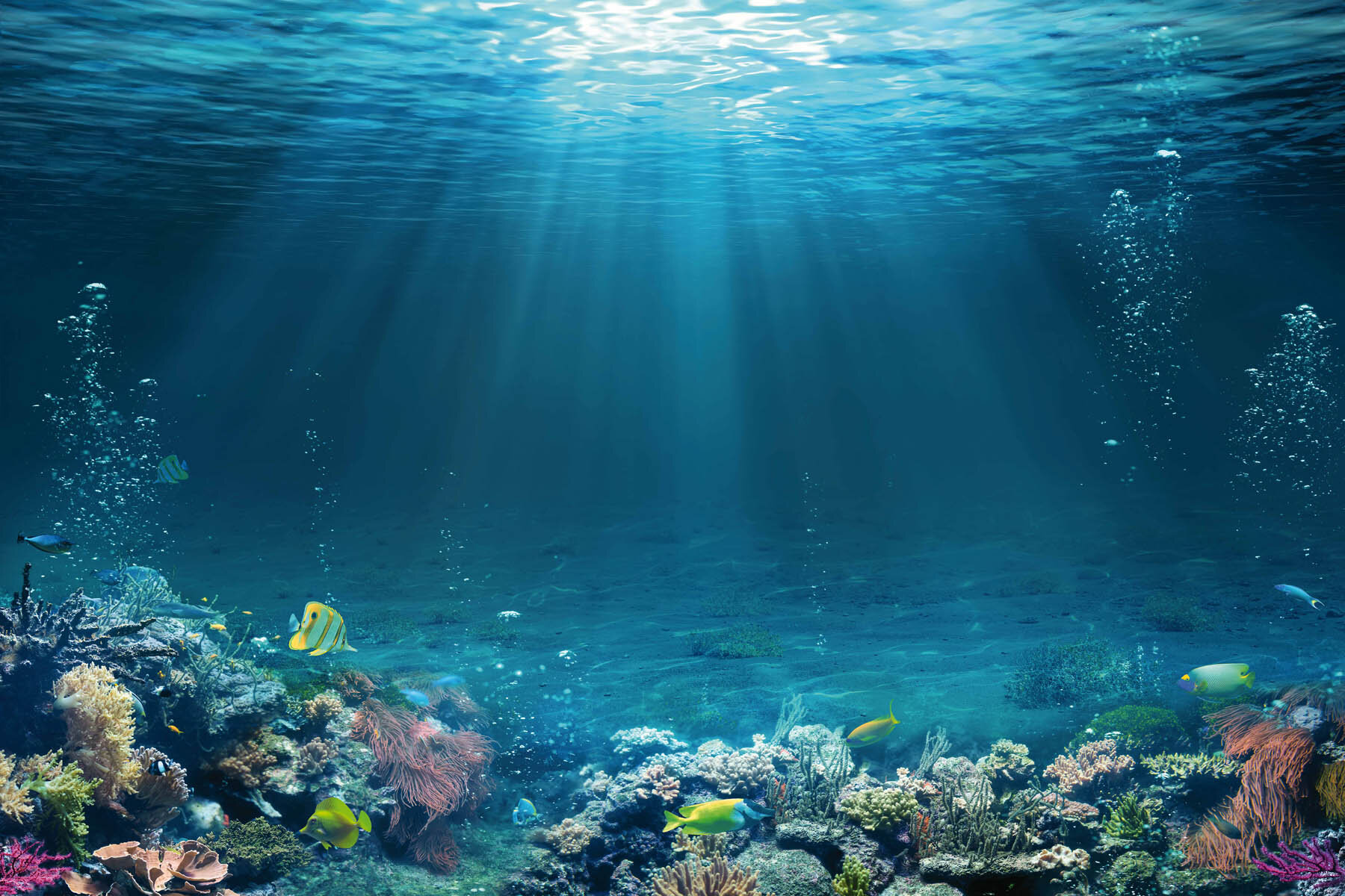 PlateART Duschrückwand mit Motiv Strand und Meer K_21_20