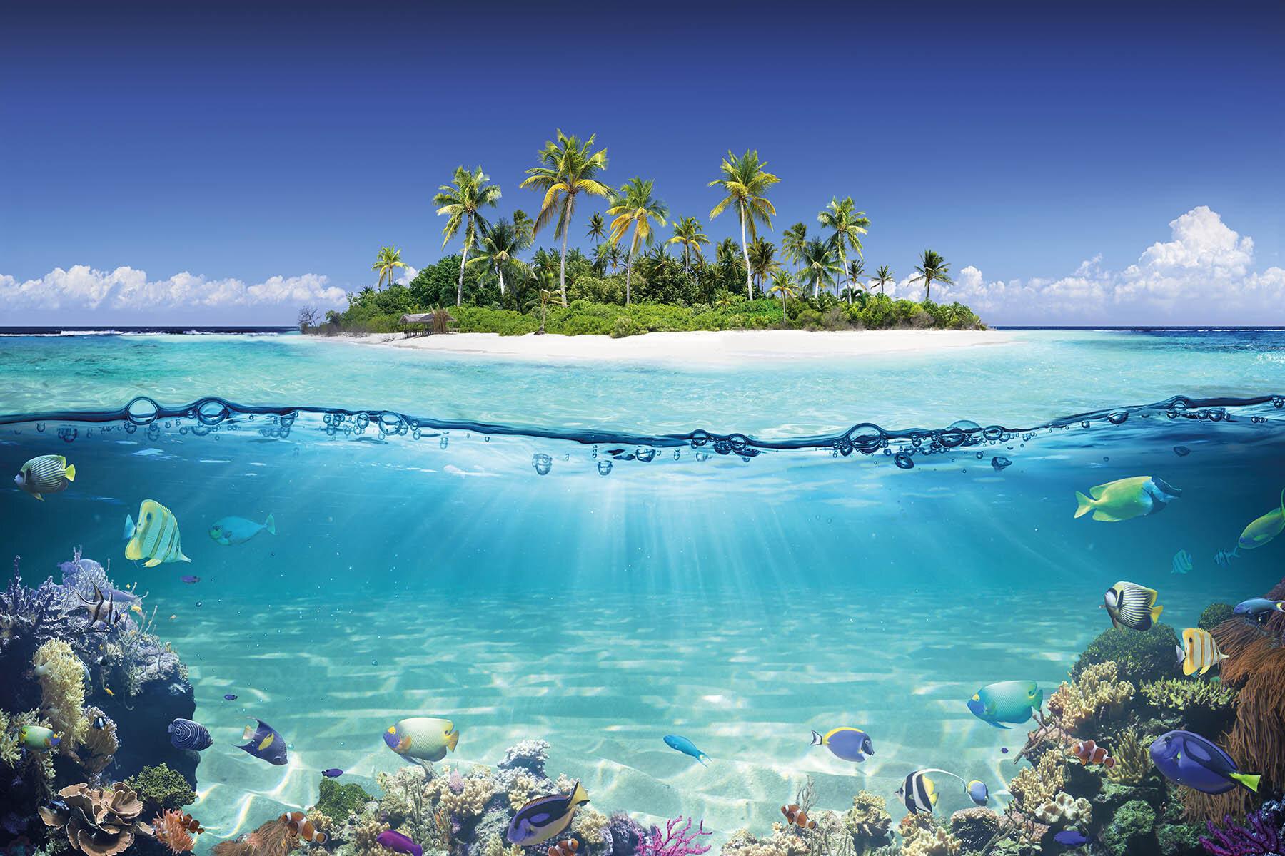 PlateART Duschrückwand mit Motiv Unterwasser Insel