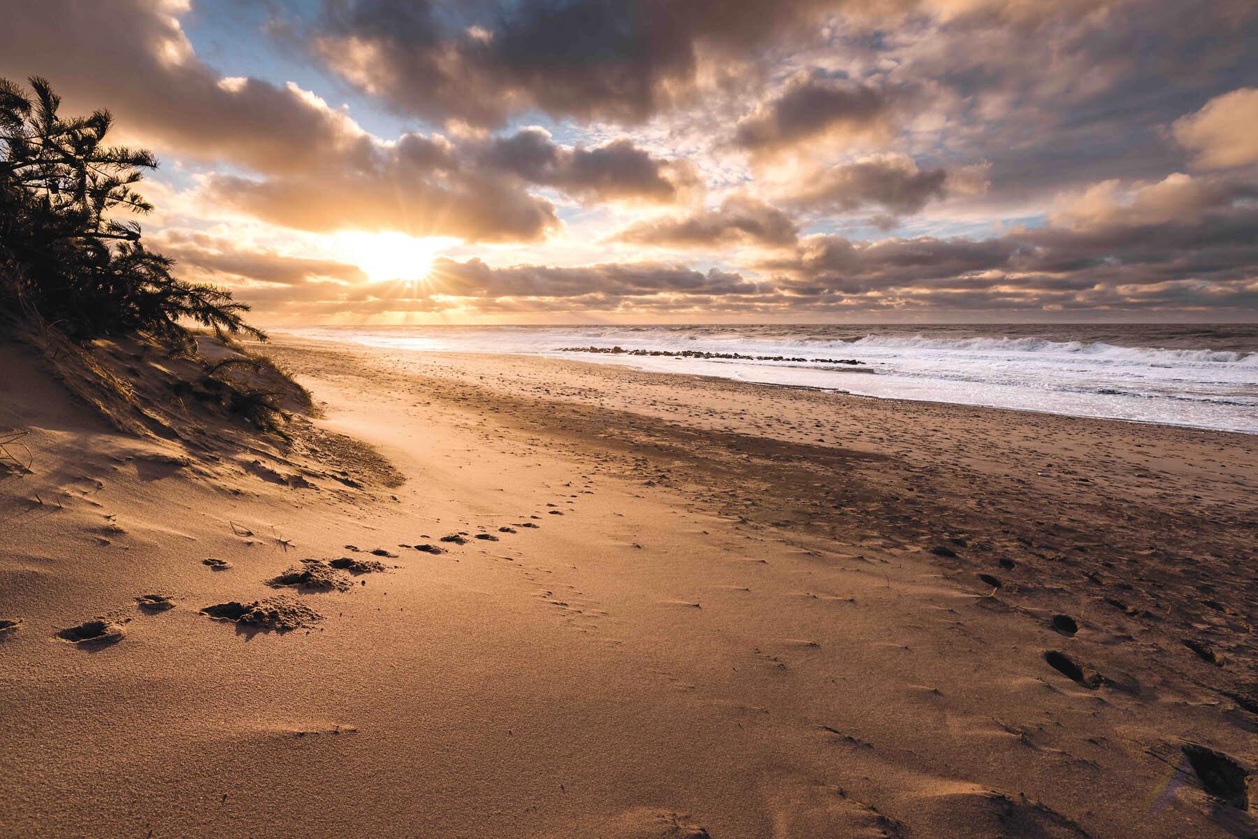 PlateART Duschrückwand mit Motiv Strand und Meer Ostsee
