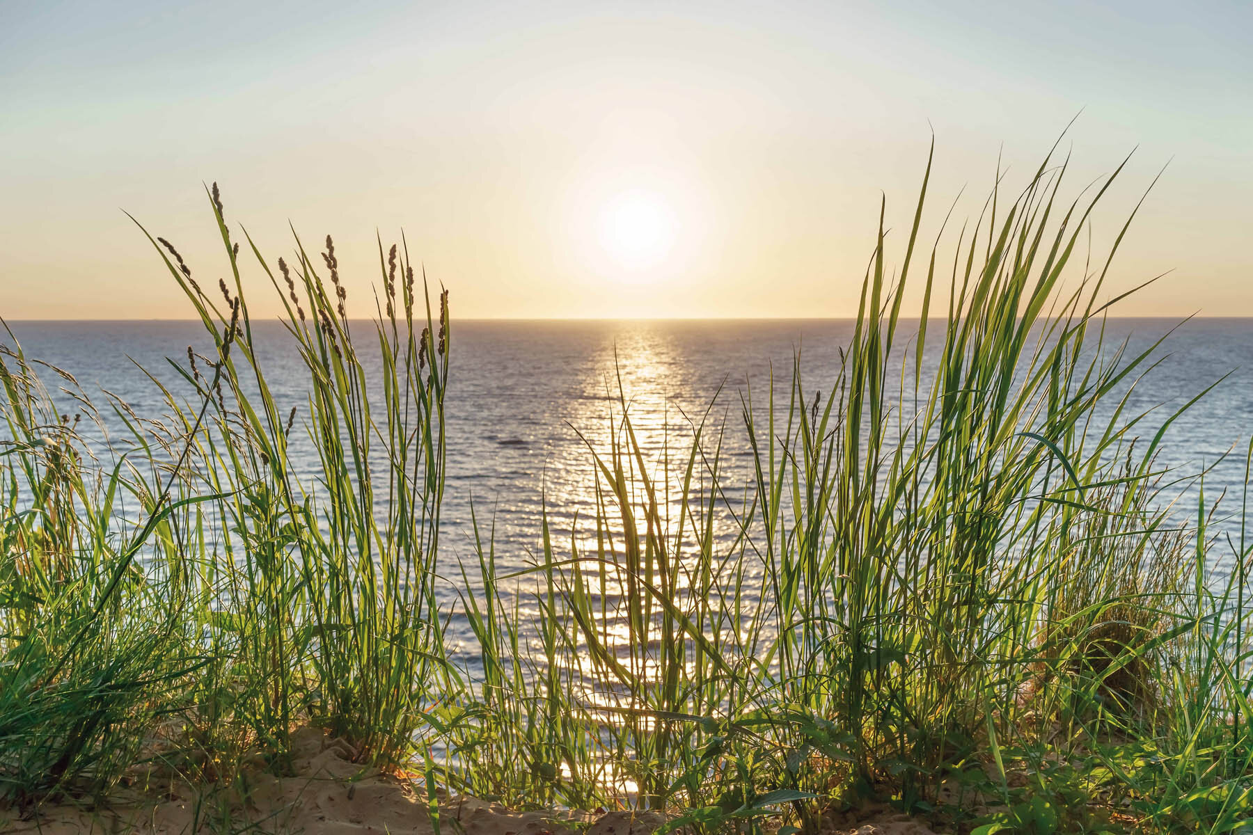 PlateART Duschrückwand mit Motiv Strand und Meer Sonnenuntergang