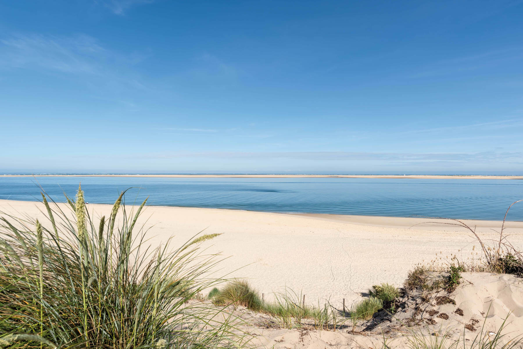 PlateART Duschrückwand mit Motiv Strand und Meer Ostsee Düne
