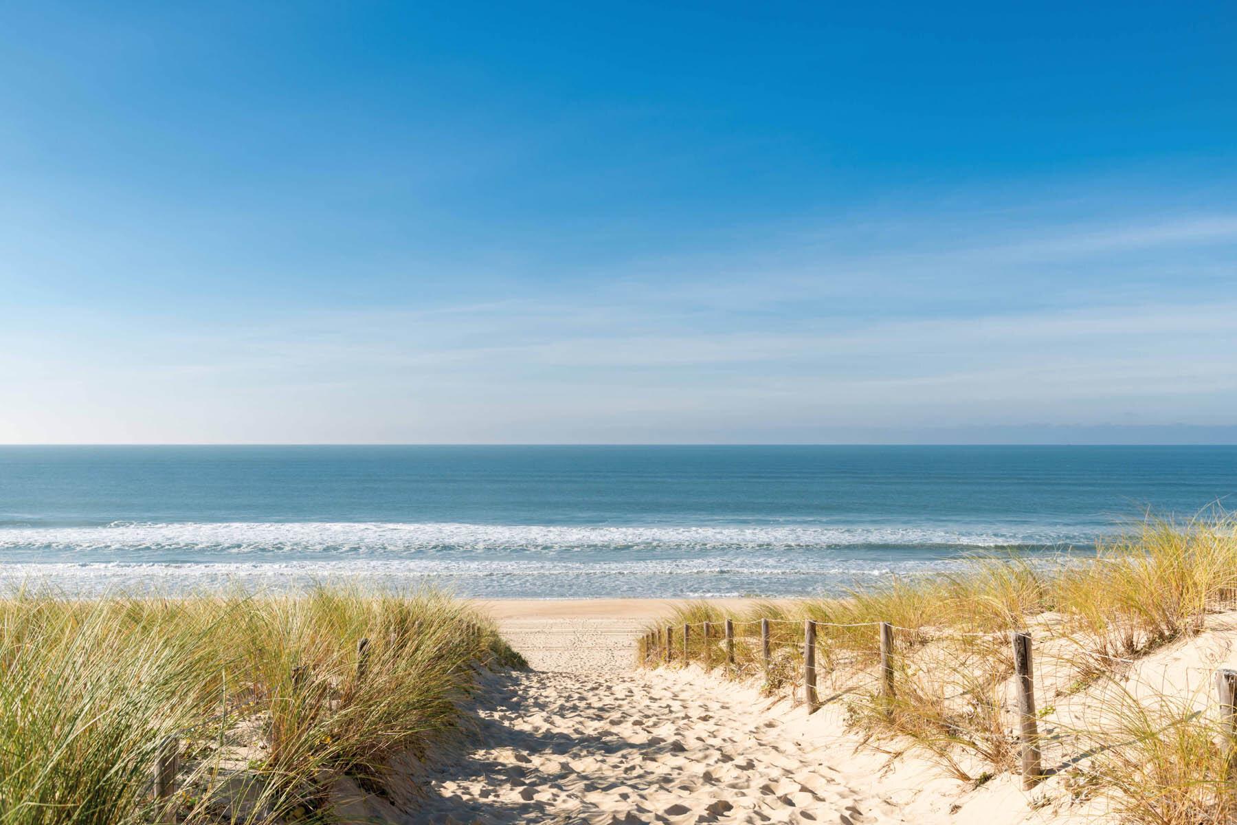 PlateART Duschrückwand mit Motiv Strand und Meer