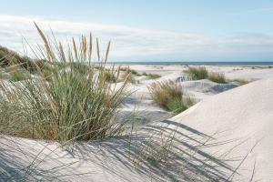 MAR_38_21 breiter Strand an der Nordsee