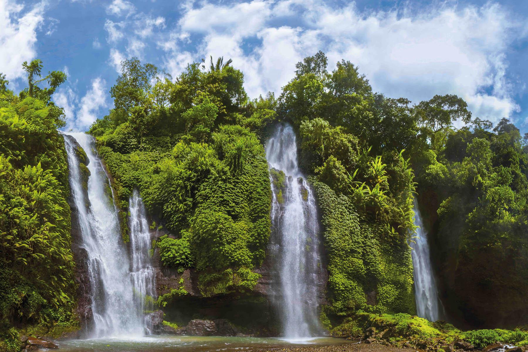 PlateART Duschrückwand mit Motiv Wasserfall Wald