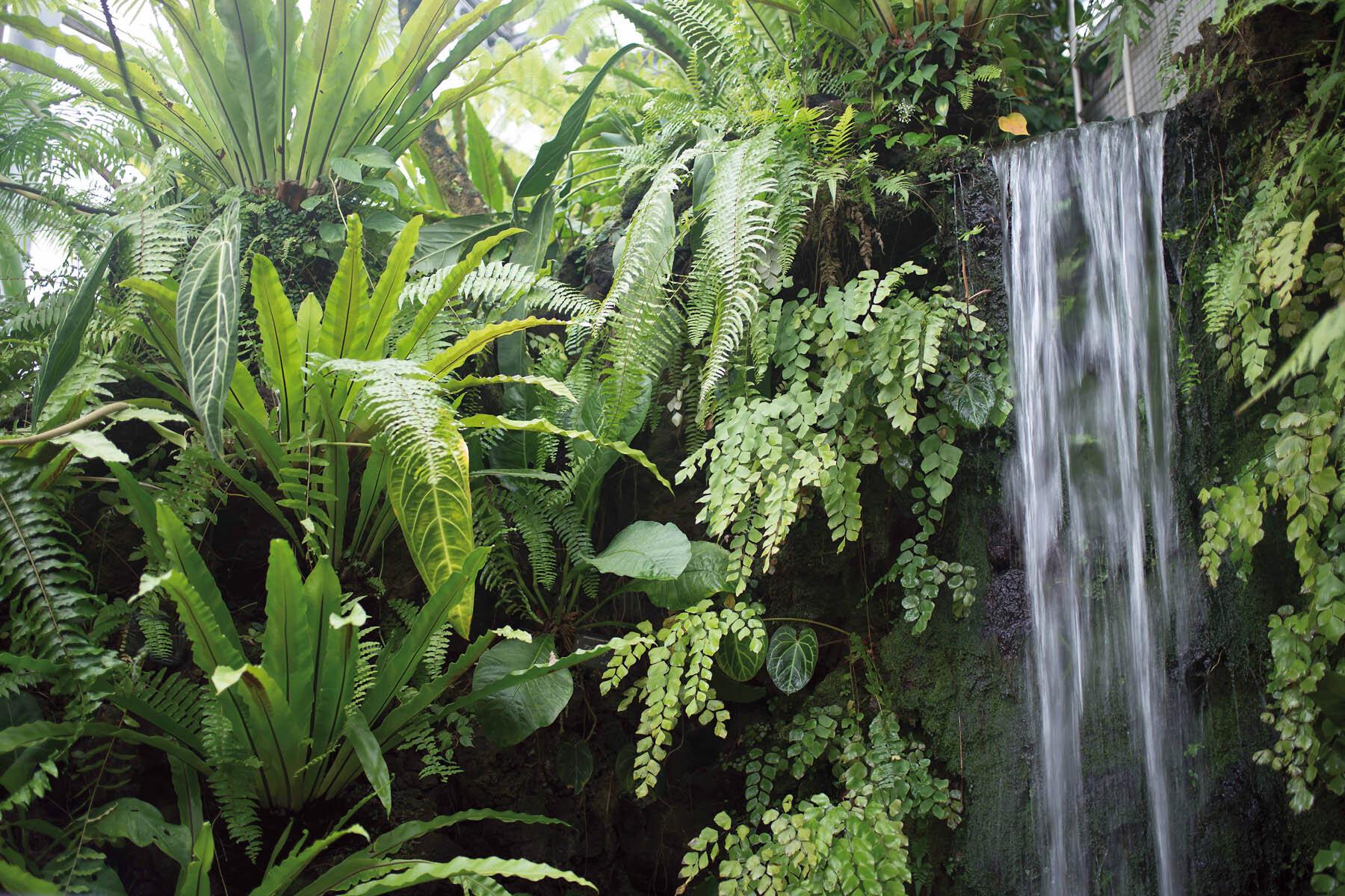 PlateART Duschrückwand mit Motiv Wasserfall WF_21_20