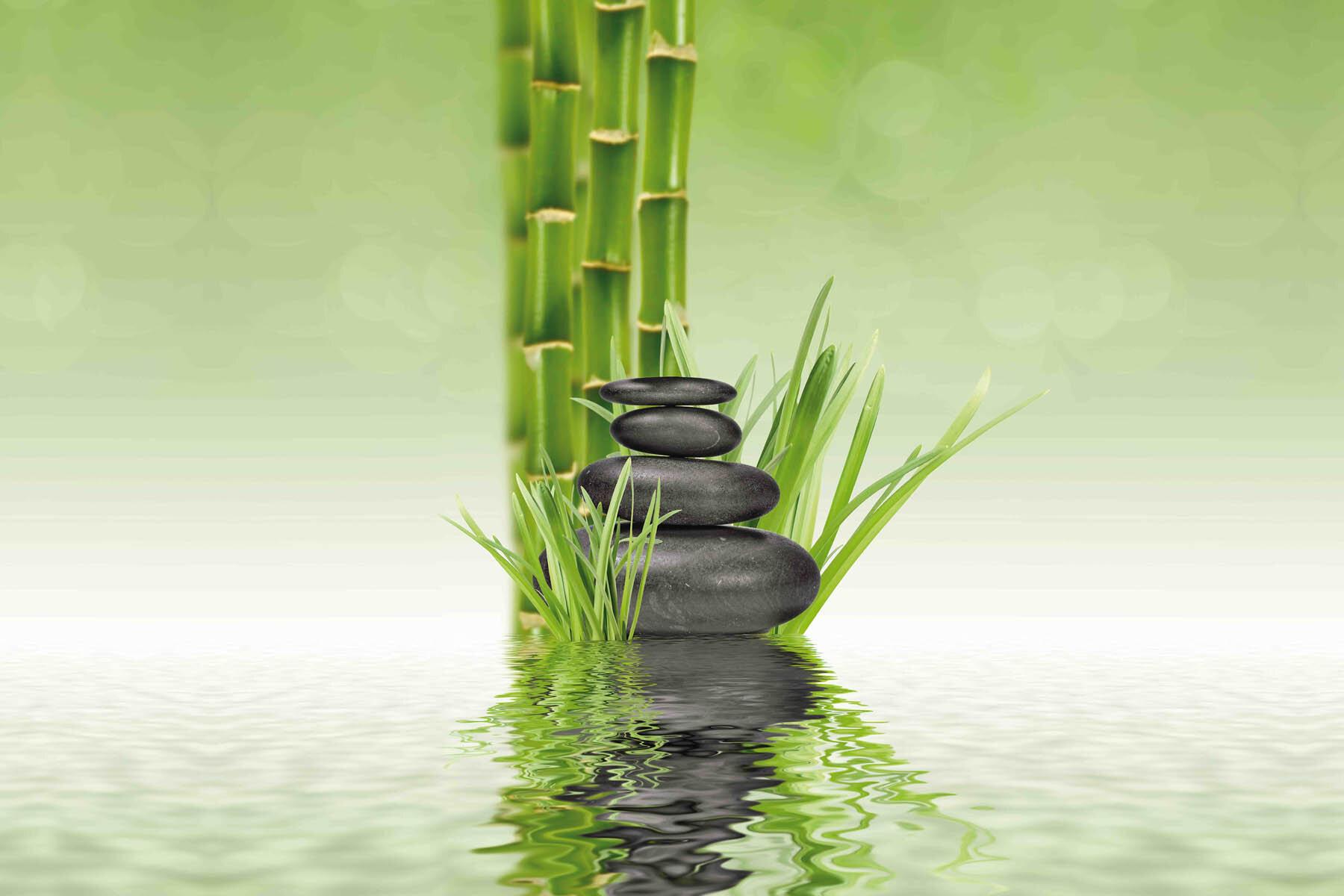 PlateART Duschrückwand mit Motiv Wellness ZEN Bambus