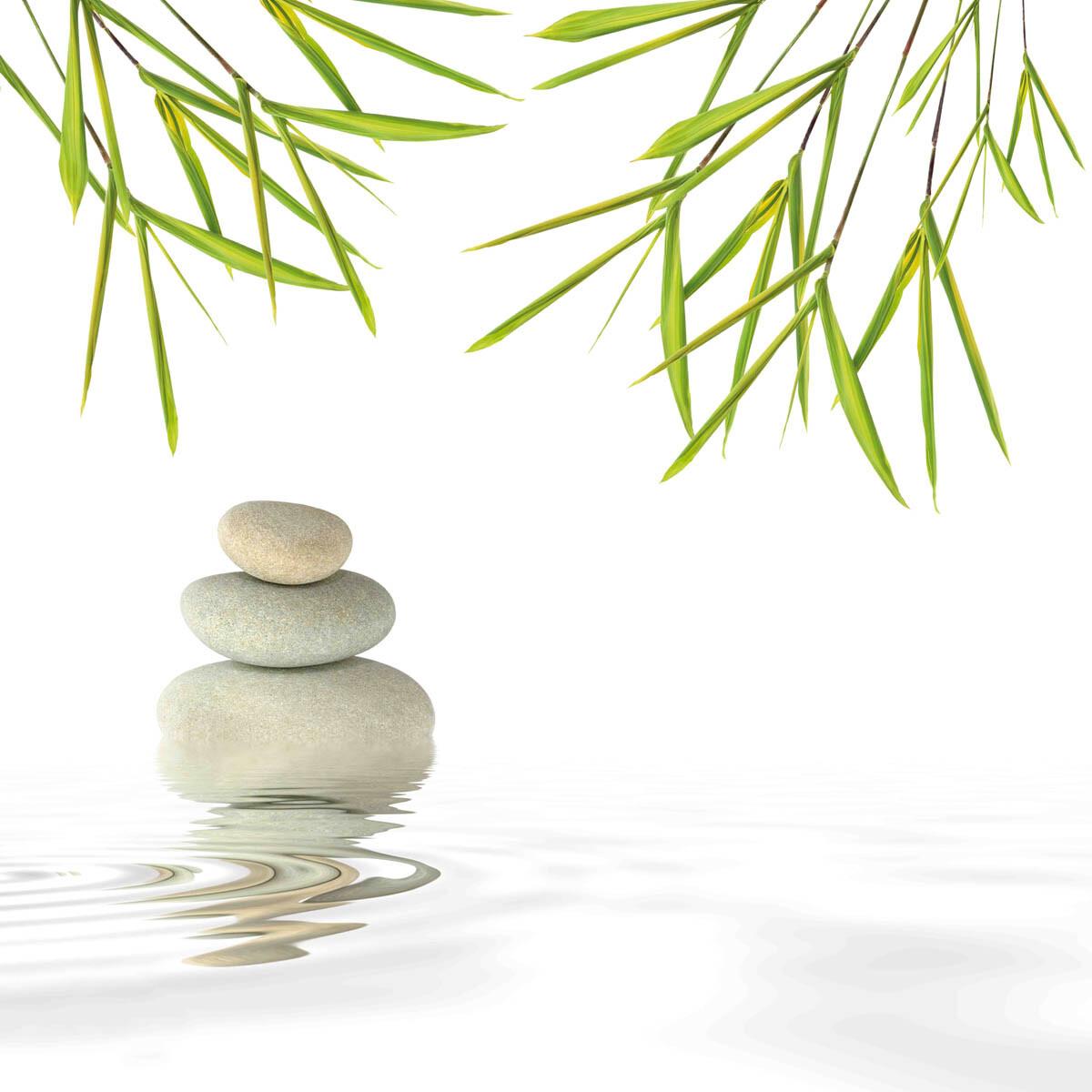 PlateART Duschrückwand mit Motiv Wellness ZEN Blätter
