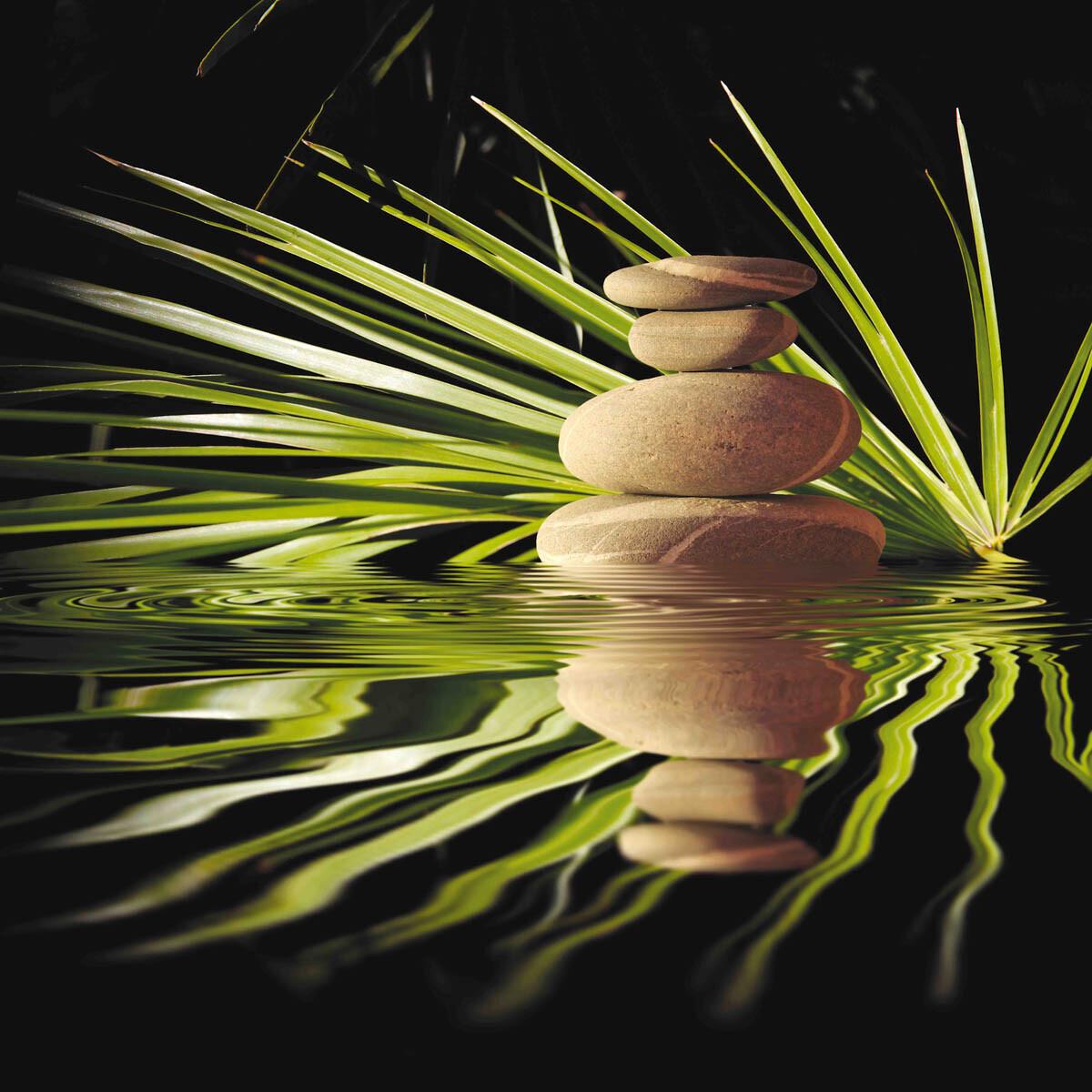 PlateART Duschrückwand mit Motiv Wellness ZEN Steine